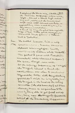 World War 1 Diaries